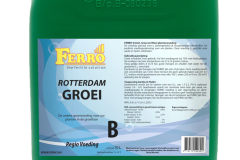 NL_ReGrB_10l