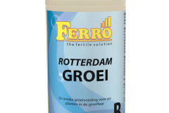 NL_ReGrB_1l